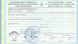 разрешение на работу в киеве